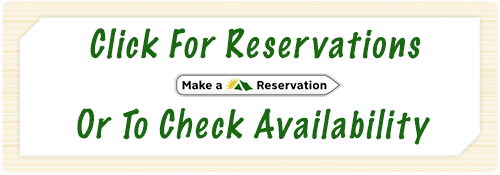 make your camping reservations at River Cities RV Park in Alexandria LA